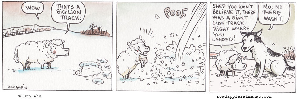 Snow Evidence