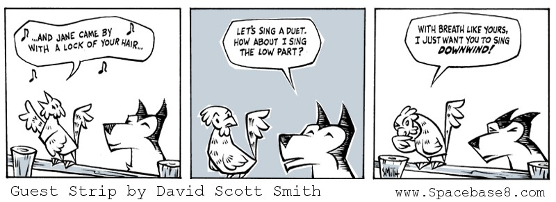 RAA D.S. Smith Guest Strip